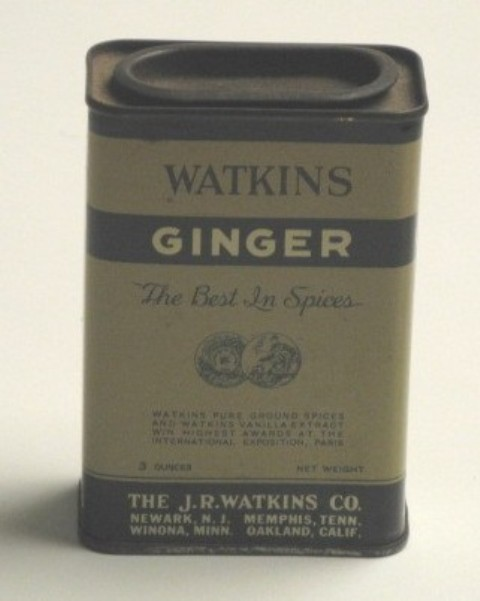 Ginger spice can