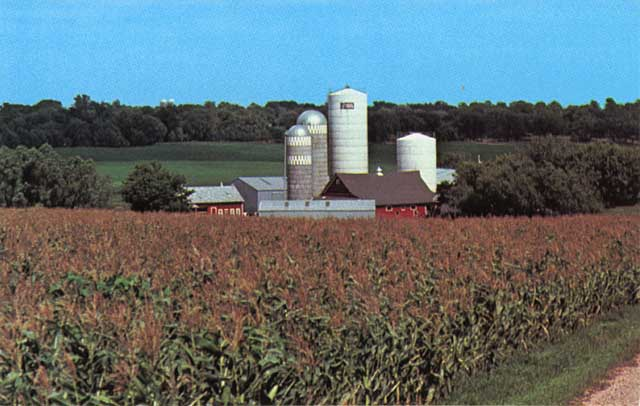 Bergman Grain-Stor silos on a farm, c.1965.
