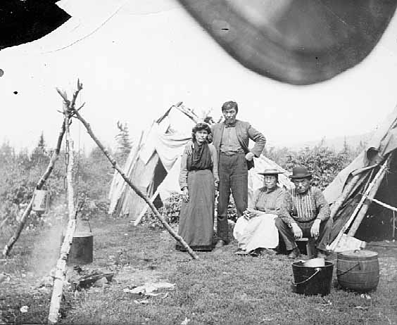 Ojibway Indians in front of wigwams, Grand Portage, 08/11/1905