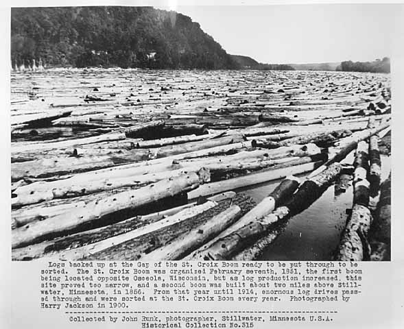 Logs backed up at the gap of the St. Croix boom ready to go through the boom and be sorted.