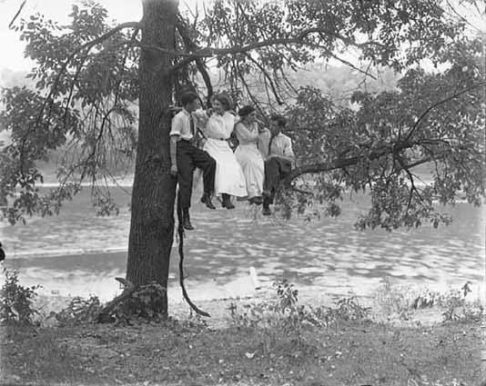 Four people in a tree.