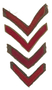 US Army issue discharge stripes